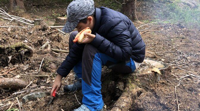 En dag i skogen – grilla korv